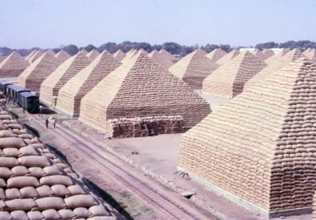 Example of the large groundnut pyramids of Kano. Image Source: TheHistoryVille